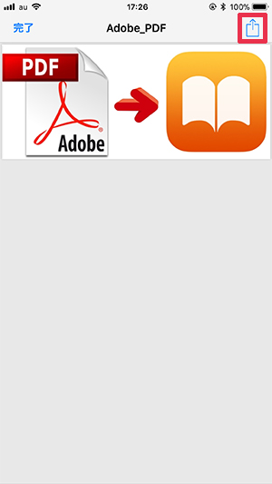 iPhone PDF iBooks